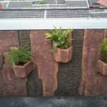 Jasa Pembuatan taman tangerang : renovasi rumah cisauk